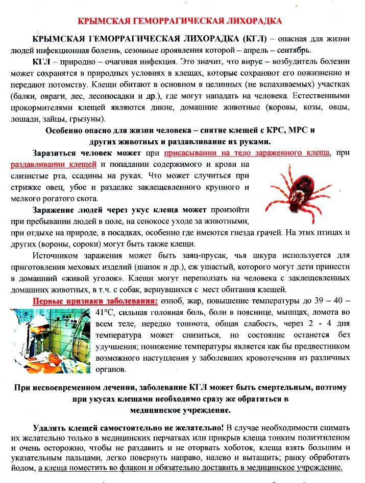 управление образования узбекистанская геморрагическая лихорадка реферат инфекция бульдозеры